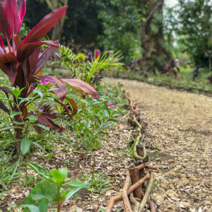Sahorana_lodge_jardin09
